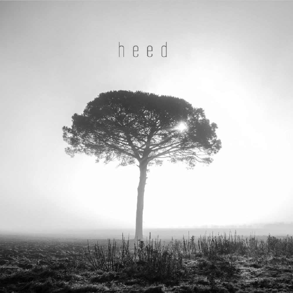 Heed - GINKGO DAWN SHOCK