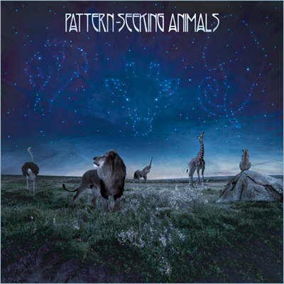 Patter-Seeking-Animals - PATTERN SEEKING ANIMALS