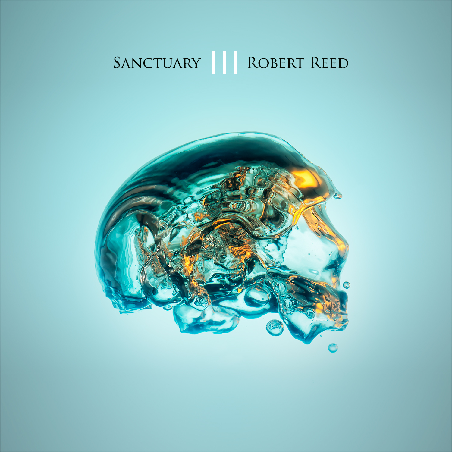 Sanctuary III (CD X2) - ROBERT REED