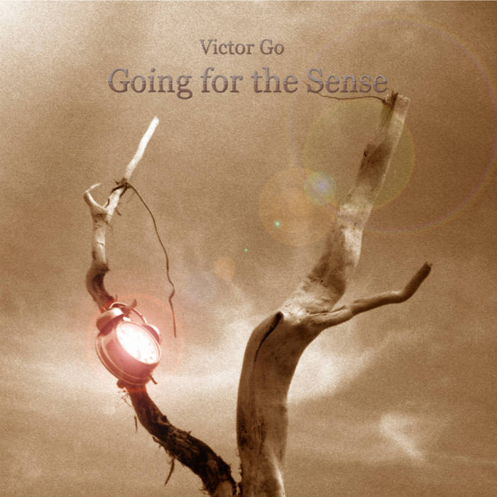 Going for the sense - VICTOR GO