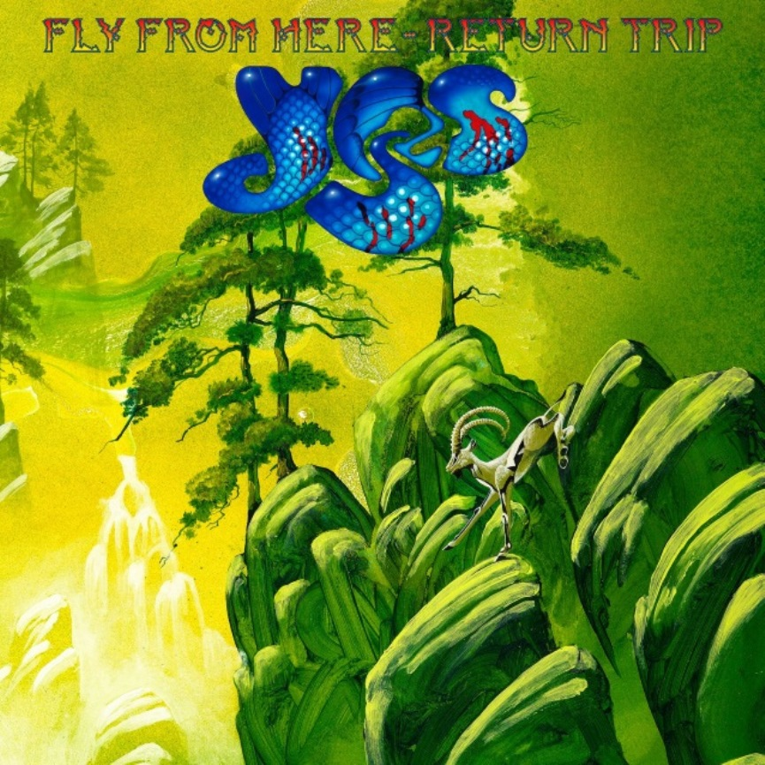 Fly from here - return trip - YES